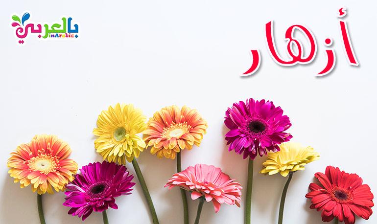 معنى اسم ازهار - أجمل أسماء البنات من وحي الزهور