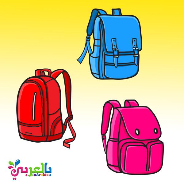أقسم نقل الفارق ادوات مدرسية حقيبة ألوان Loudounhorseassociation Org