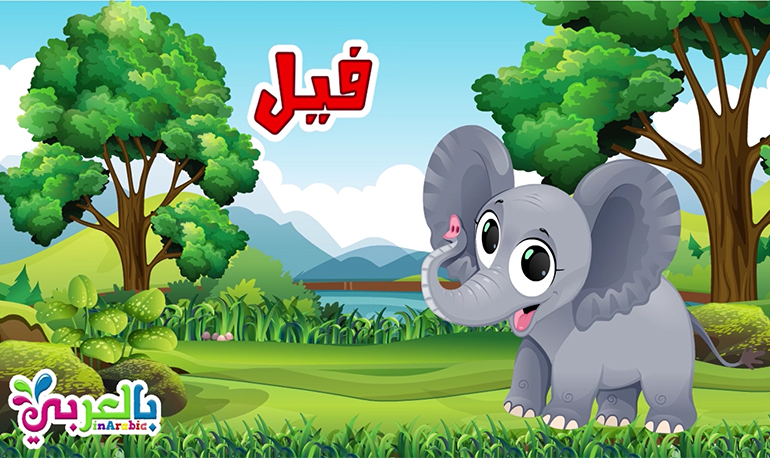 معلومات عن الفيل للاطفال