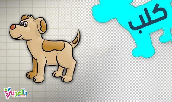 رسم كلب للاطفال - رسمة ومعلومة