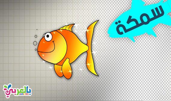 رسم سمكة تعليم الرسم للاطفال