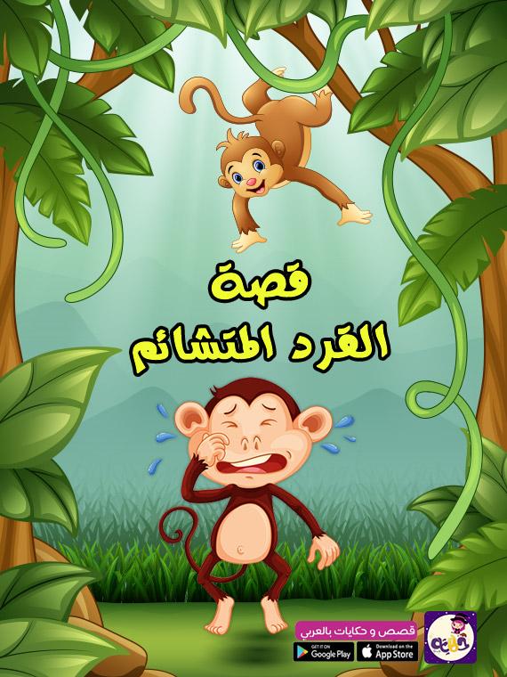قصة القرد المتشائم