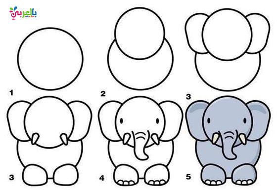 رسم فيل خطوة بخطوة