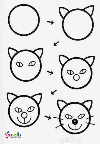 رسم قطة للاطفال