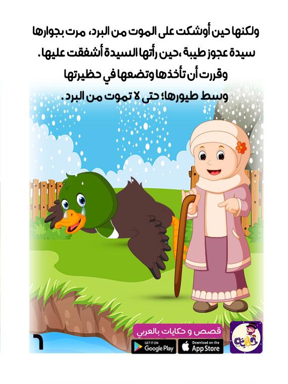 قصص اطفال البطة القبيحة مصورة اجمل قصص اطفال