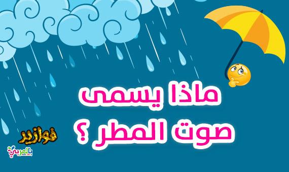 ماذا يسمى صوت المطر