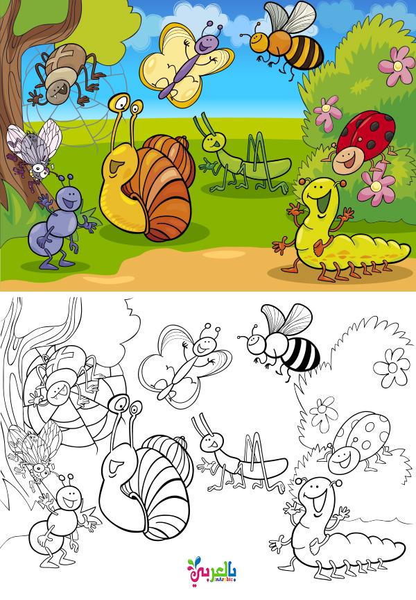 رسومات الربيع للطباعة للاطفال