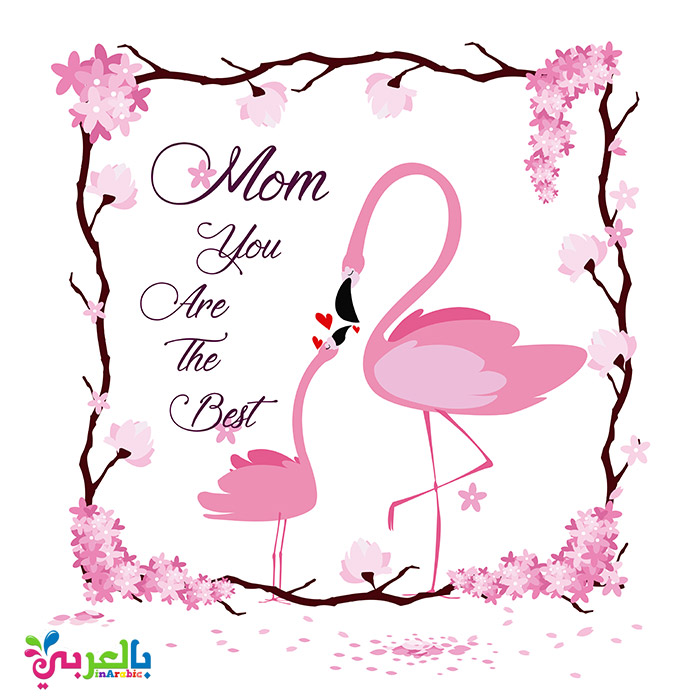 Happy mothers flamingo card