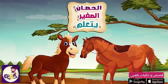 قصص تربوية لأطفال المدارس ورياض الأطفال قصة الحصان الصغير يتعلم
