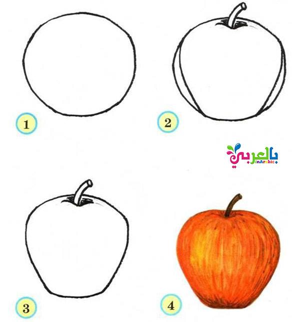 البوم رسومات فواكة الصيف بالخطواط - رسم تفاحة