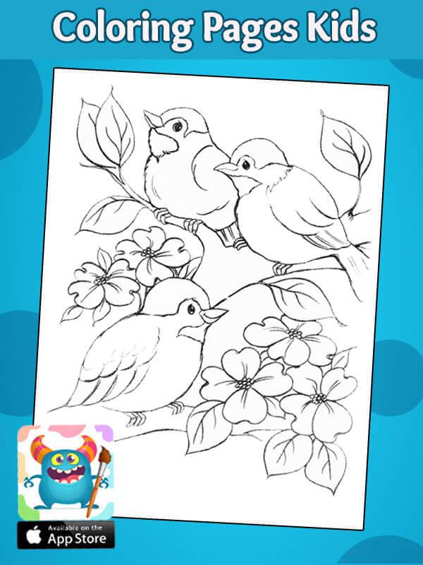 رسوما اطفال للتولين طيور