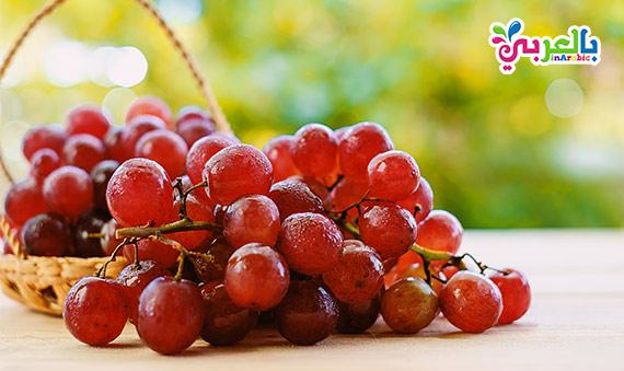 العنب الفاكهة الصيفية الرائعة بإمتياز، فواكه فصل الصيف