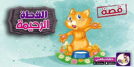 قصة القطة الرحيمة مصورة :: قصص العقيدة للاطفال