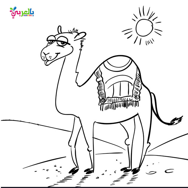 Coloring Camel for kids