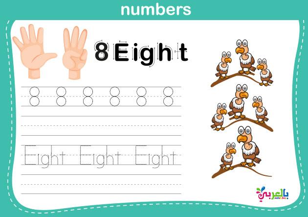 تعليم الاطفال كتابة الارقام باللغة الانجليزية - number worksheets for kindergarten