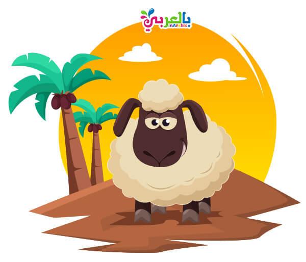 صور خروف العيد - بطاقات تهنئة عيد الاضحى 2019