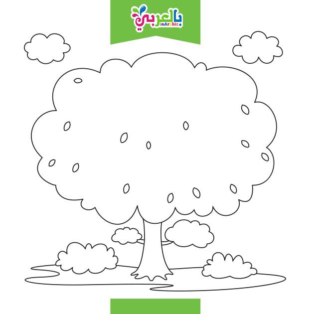 اوراق تلوين لاطفال الروضة تلوين شجرة
