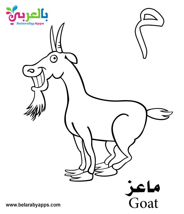 Free Arabic alphabet card printable