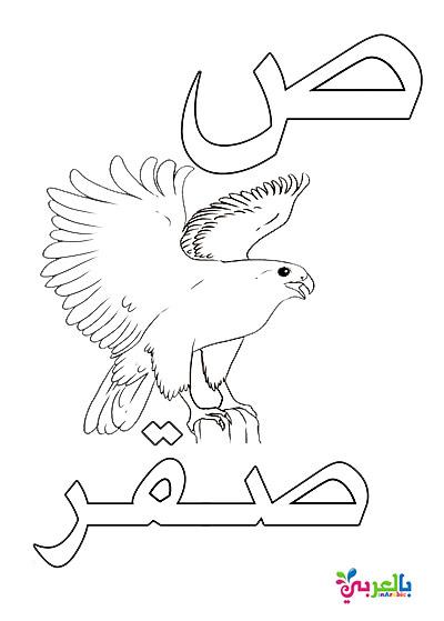 تحميل بطاقات الحروف العربية جاهزة للطباعة