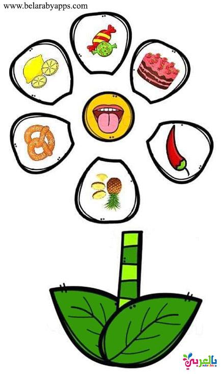 أوراق عمل حاسة التذوق للاطفال - لعبة الحواس الخمسة للاطفال