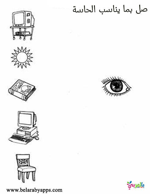 تمارين عن حاسة البصر جاهز للطباعة