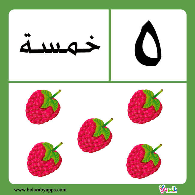 بطاقات الأرقام بالغة العربية للاطفال
