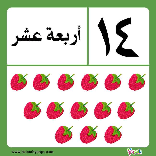 تعليم الارقام العربية للاطفال :: بطاقات الارقام بالحروف