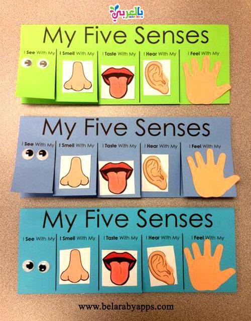 العاب عن الحواس الخمسة للطباعة - أوراق عمل عن الحواس الخمسة للأطفال