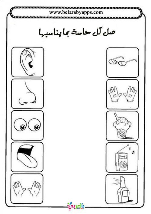 صور اسئلة عن الحواس الخمس للطباعة - أوراق عمل عن الحواس الخمسة للأطفال