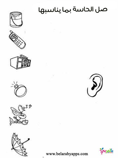 تمارين عن حاسة السمع جاهز للطباعة