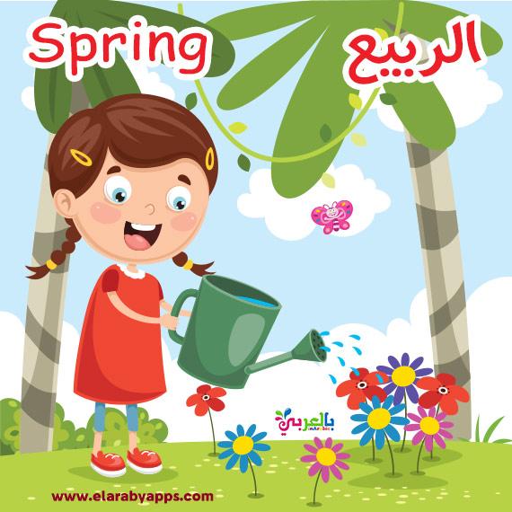 بطاقات فصل الربيع