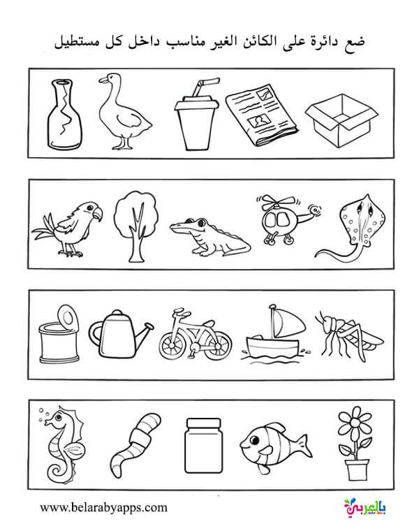 اوراق عمل تدريبات الفرق بين الكائنات الحية والغير حية