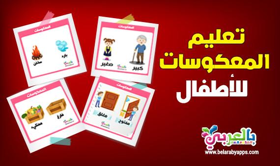 بطاقات تعليم المعكوسات للاطفال :: تعليم المتضادات للاطفال