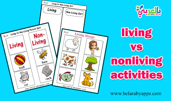 living vs nonliving activities for kindergarten