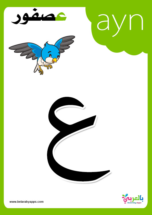 flashcards printable with pictures