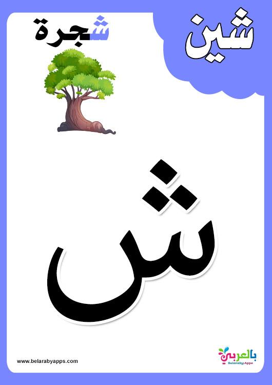 تعليم الحروف العربية للأطفال باستخدام البطاقات