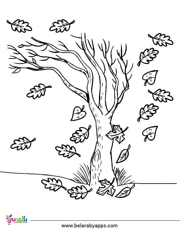 كيفية رسم شجرة خريف Shajara