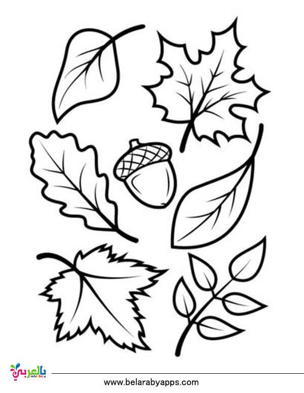 رسومات عن فصل الخريف بسيطة للتلوين