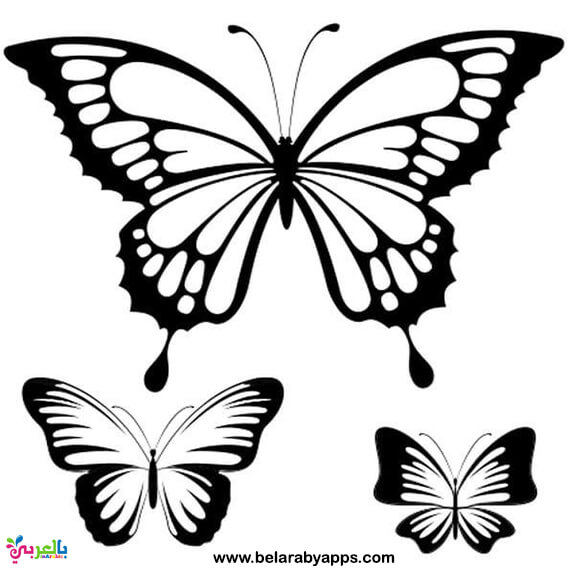 different size butterfly templates