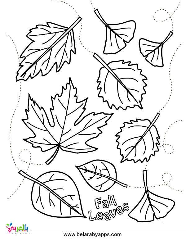 رسم فصل الخريف بسيط