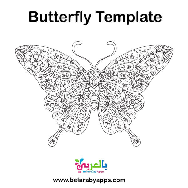 Hand drawn butterfly coloring page