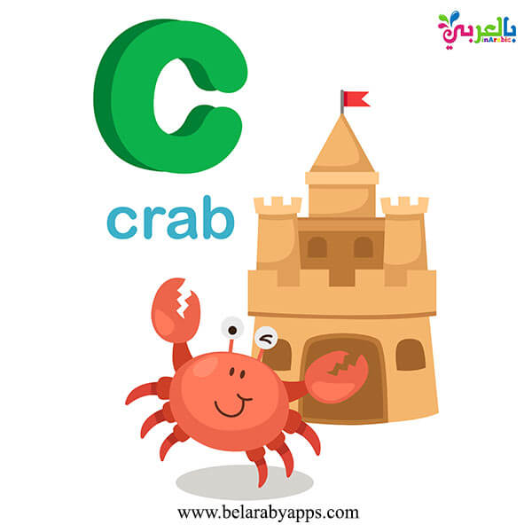 Alphabet letters with pictures flashcards