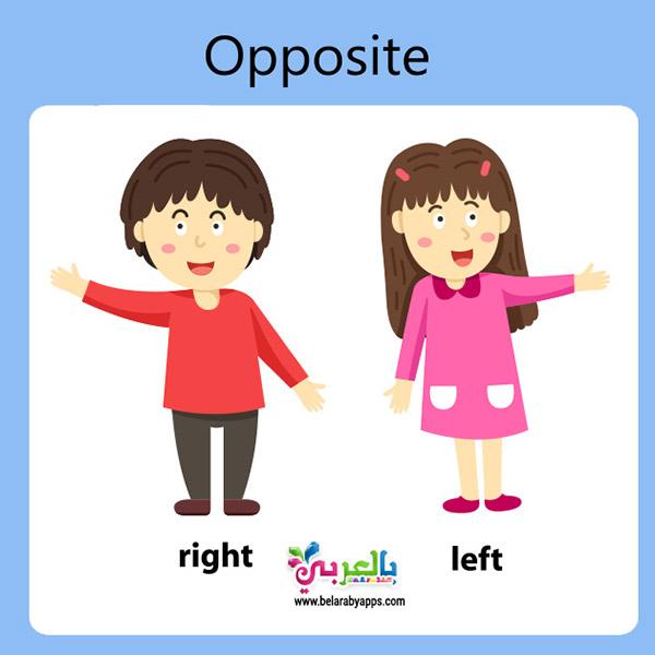 كروت المعكوسات بالانجليزي :: تعليم المتناقضات للاطفال