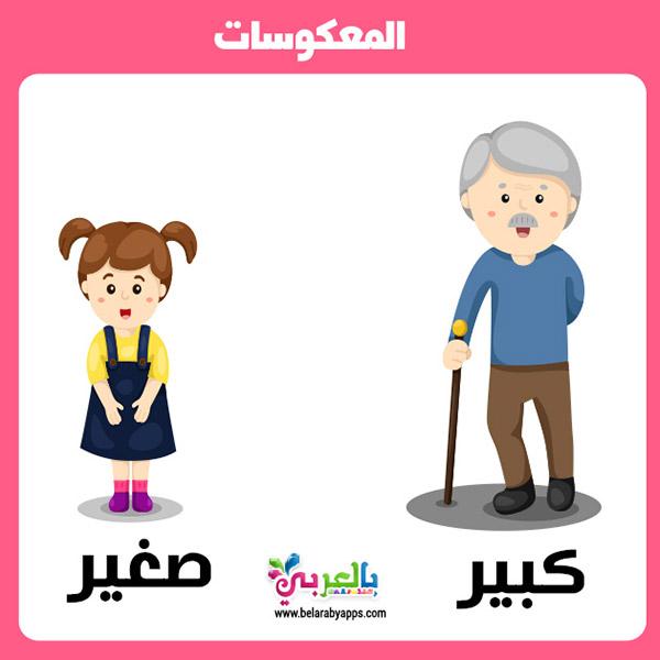 تعليم المتضادات للاطفال :: وسائل تعليمية حديثة بالصور