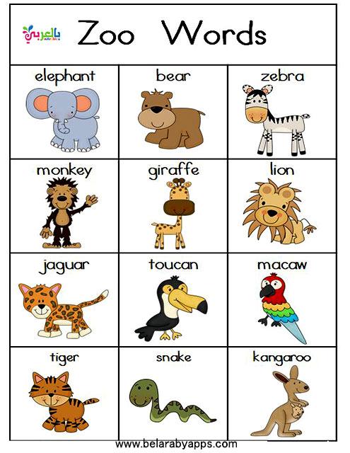 بطاقات تعليمية باللغة الإنجليزية للأطفال
