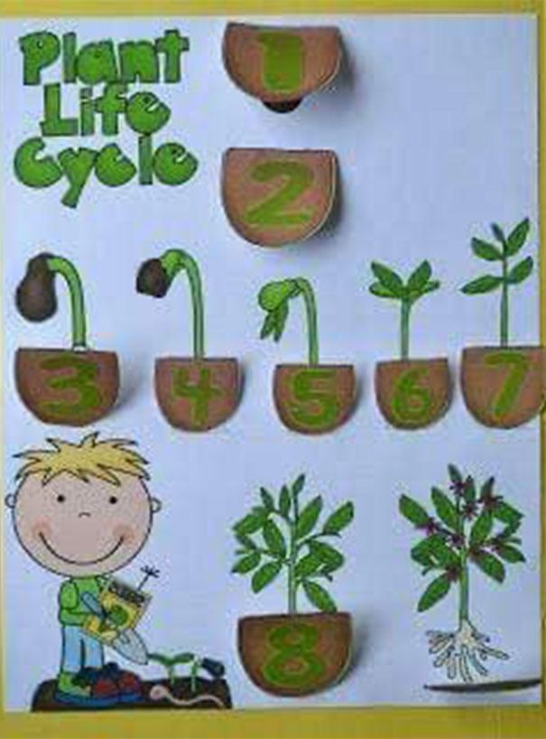 وسائل تعليمية للعلوم لرياض الأطفال