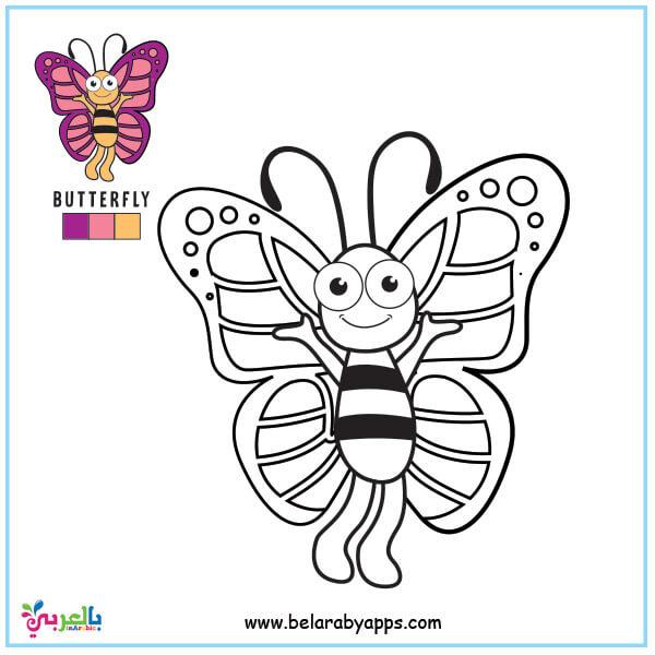 أجمل رسومات فراشات للتلوين للأطفال -رسومات فراشات ملونة