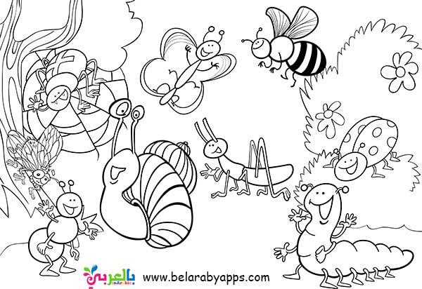 رسومات عن الربيع للتلوين- فراشات للتلوين للأطفال