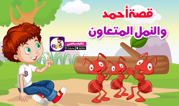 قصة أحمد والنمل المتعاون :: قصص عن التعاون للاطفال