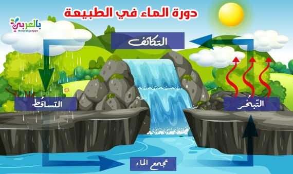 رسومات عن دورة الماء في الطبيعة للاطفال .. رسم تعليمي